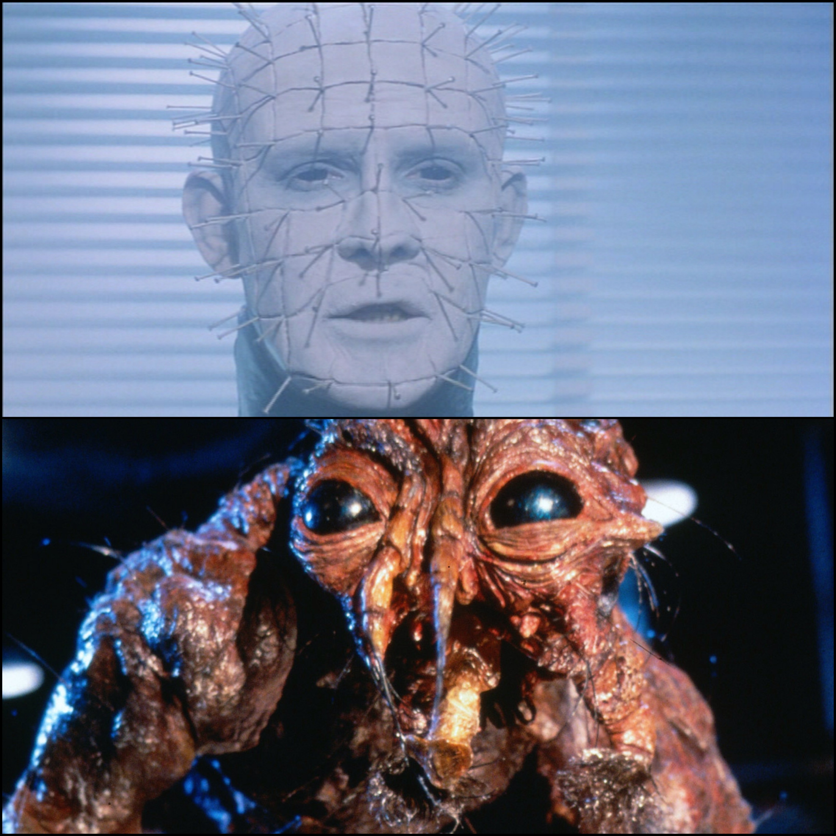 80's Body Horror – The Fly and Hellraiser