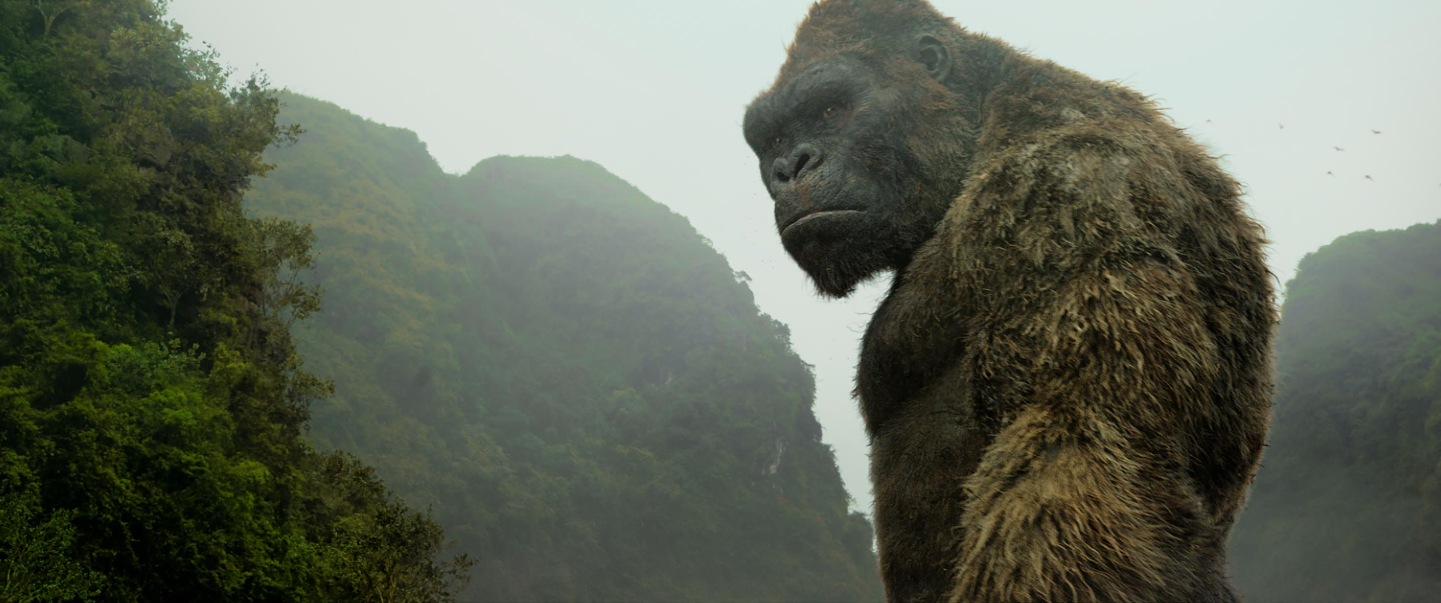 HorrorHouse Picture Show (#6) – Kong: Skull Island